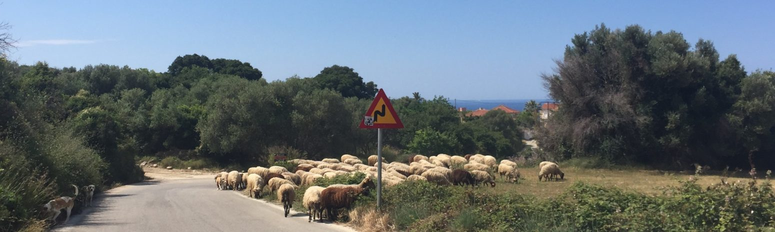 Driving in Kefalonia and Hazards